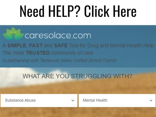 Need Help - Caresolace online resources - click on graphic for link